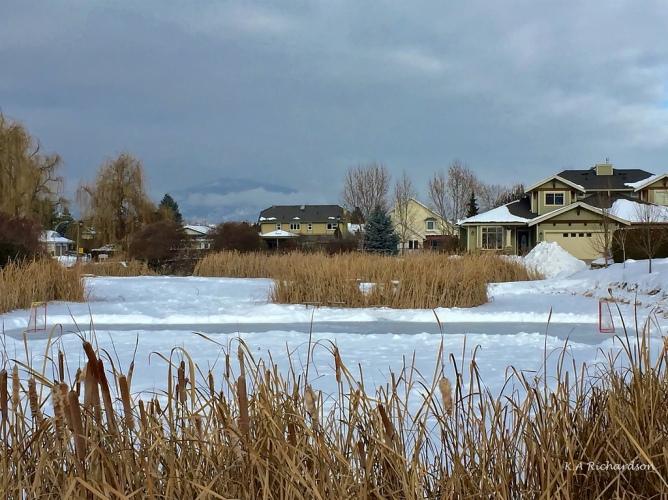 Belmont Pond 170114.jpg