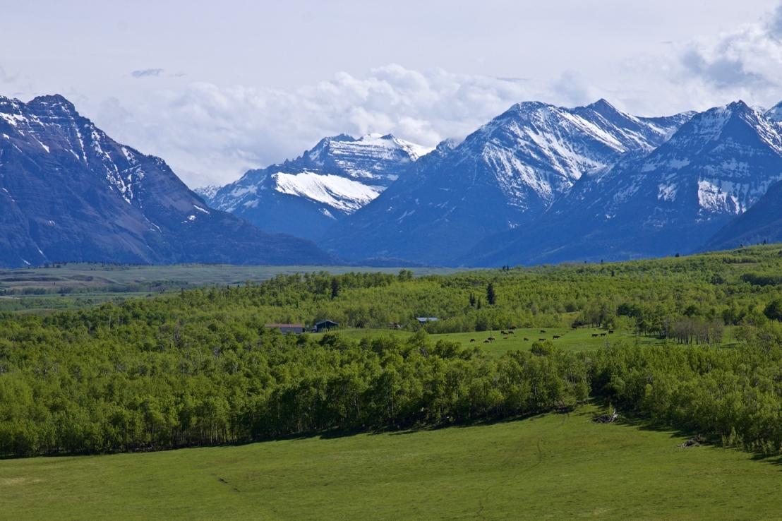 Southwestern Alberta (3).jpg